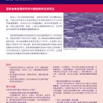 中 国 项 目
