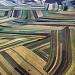 中国:把农业研究摆在战略优先地位