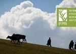 国际食物政策研究所 (IFPRI) 研究摘要精选
