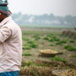 2017全球粮食政策报告