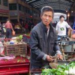 樊胜根:改革是建立一个健康农产品部门的关键
