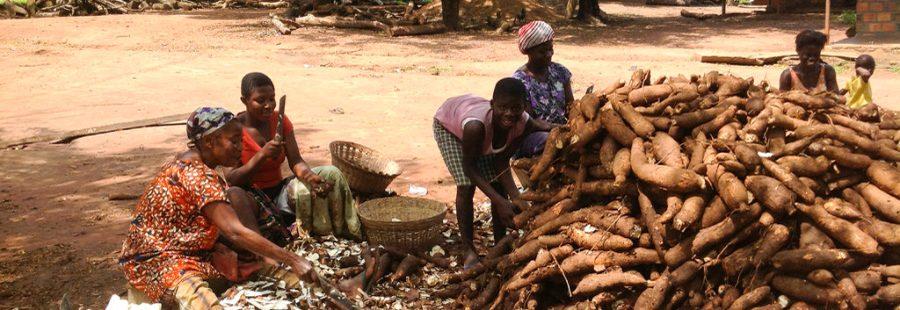 从非洲国家的五点经验看如何减少营养不良