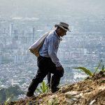 饥饿的不平等:全球饥饿指数聚焦减少饥饿进程的不均衡