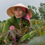全球饥饿指数—亚洲概况