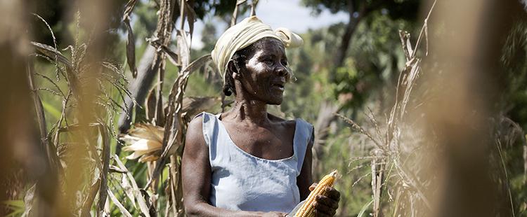 Daniel Rosenthal/Welthungerhilfe 2013