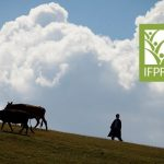 国际食物政策研究所 (IFPRI) 研究摘要精选:2017年4月–6月