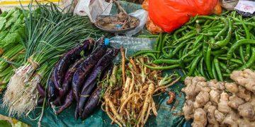 樊胜根:建设高质量农业和食物系统