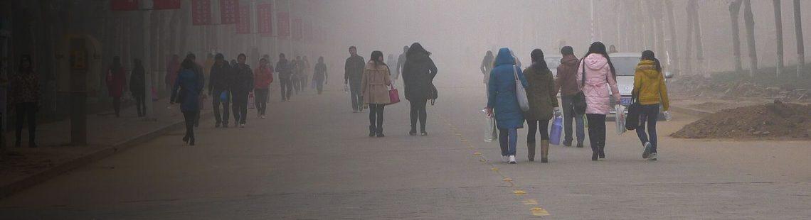 新发现: 空气污染会导致语言和数学测试分数降低