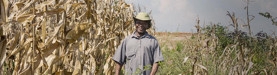 李一诺:运用中国农业经验应对非洲发展挑战