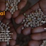 《2018年全球营养报告》:全球每年因营养性疾病而产生的损失高达3.5万亿美元
