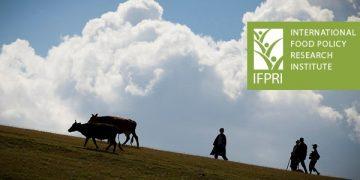 国际食物政策研究所(IFPRI)研究摘要精选2018年7月-9月