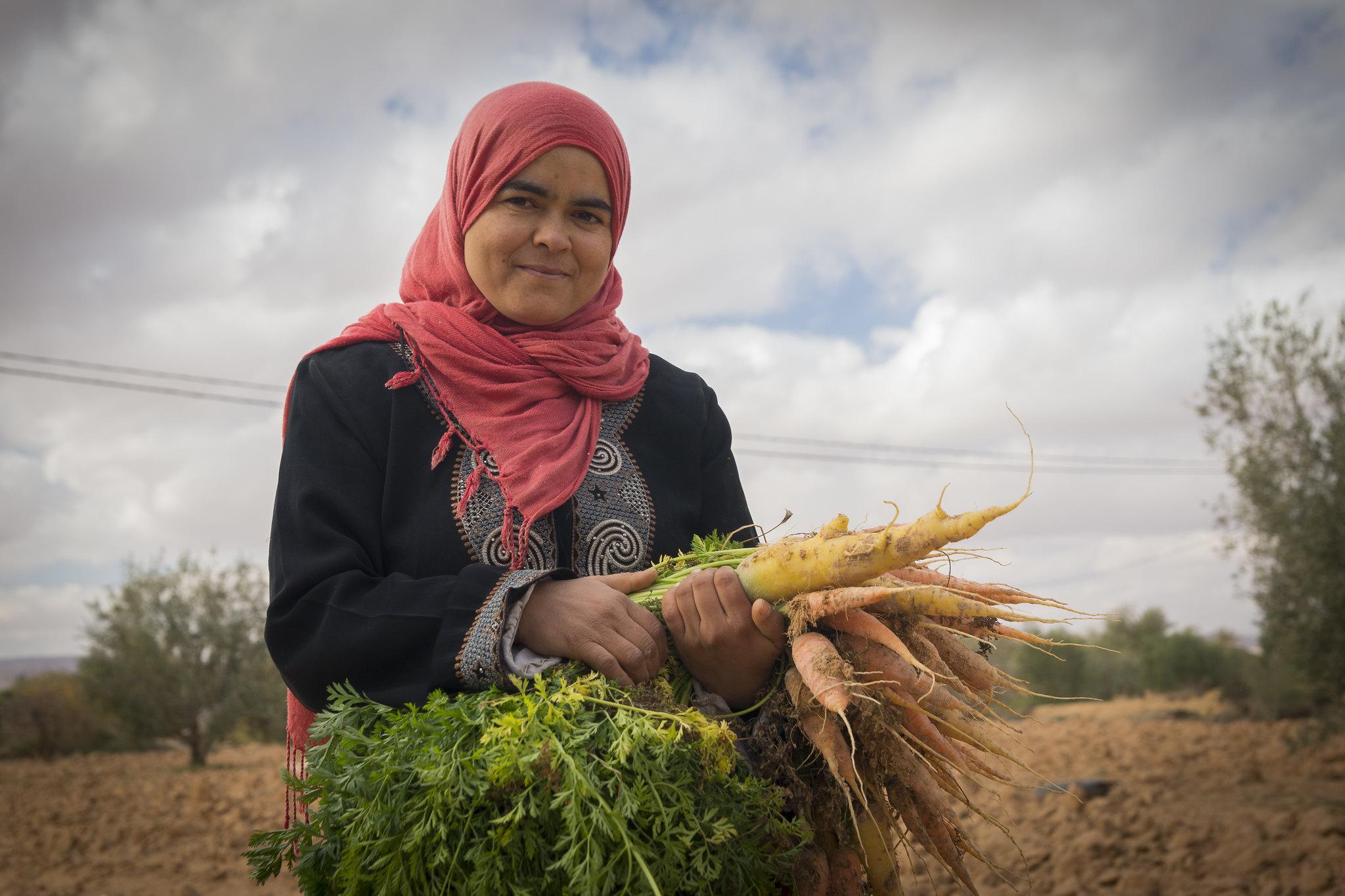 突尼斯的一位女性菜农