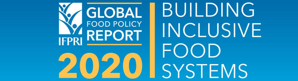 《2020全球粮食政策报告》正式发布了!
