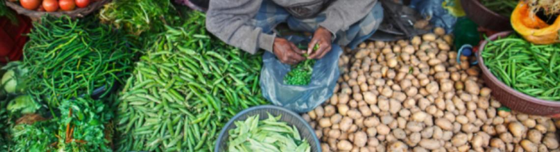 应对全球粮食危机,出口禁令是下下策