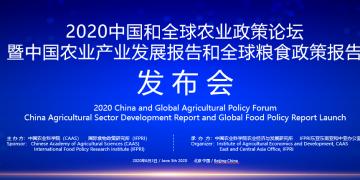 《2020全球粮食政策报告》在北京发布