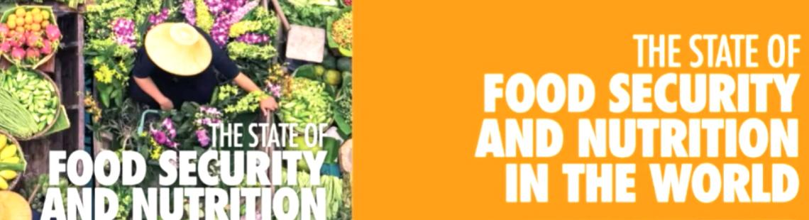 IFPRI携手FAO召开食物系统转型网络研讨会