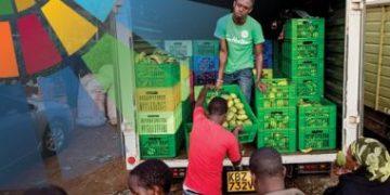 小农和农业-食品中小企业抵御冲击的能力:新冠肺炎给联合国粮食系统峰会的经验